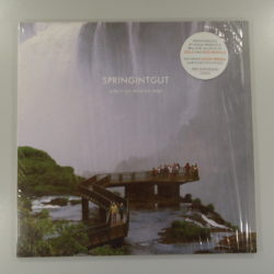 Springintgut ‎– Where We Need No Map